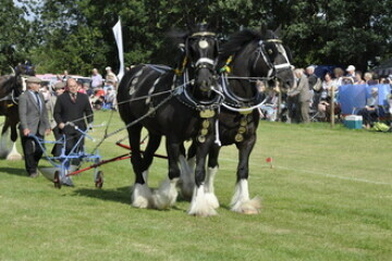 Heckington Show 2018